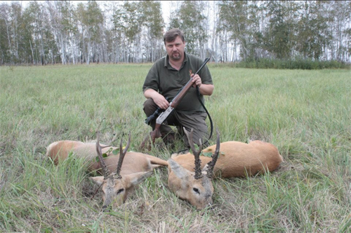 sibirian roe deer2 Hunting in Russia - Kurgan